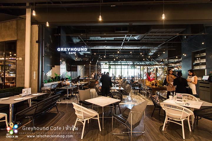 opening greyhound001