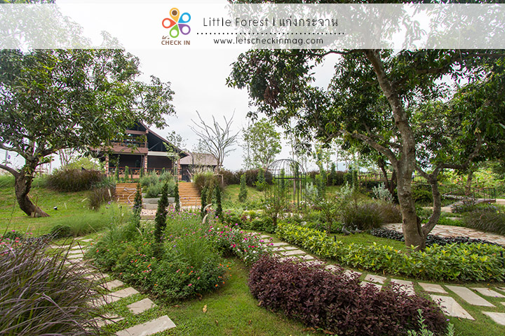 little_forest_006