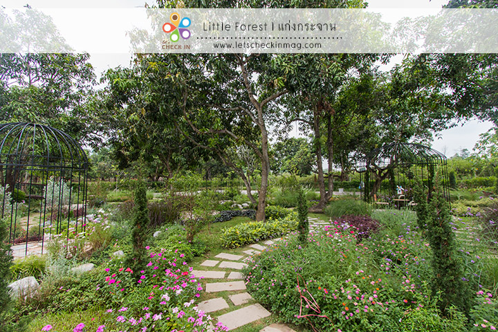 little_forest_007