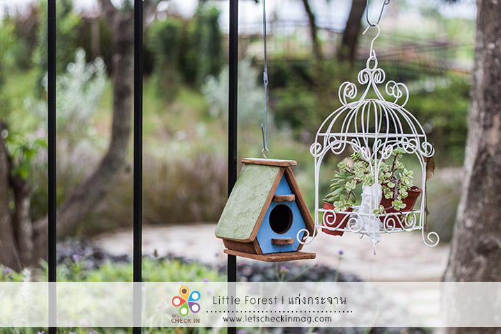 little_forest_011