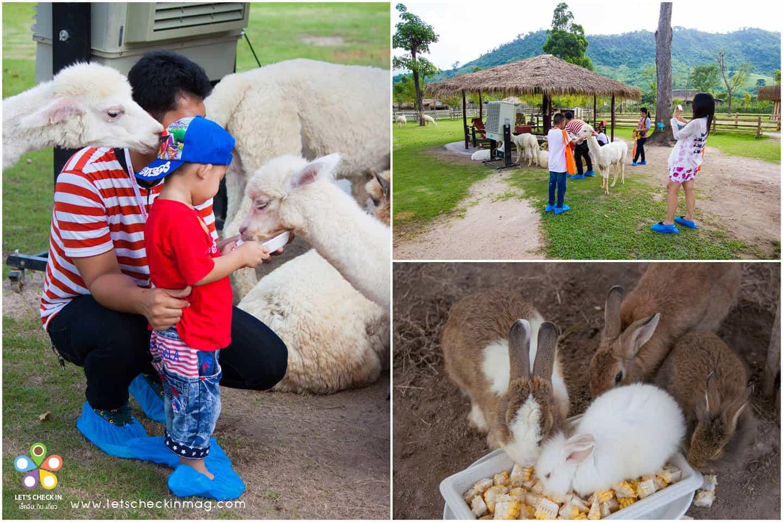 สวนสัตว์ สำหรับเด็ก